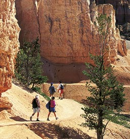 Zion Hiking Trip